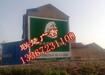 洪湖墙体广告在线投放远程监测,洪湖墙体广告资源广