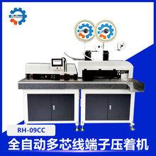 RH-09CC-全自动多芯线端子机压着机图片