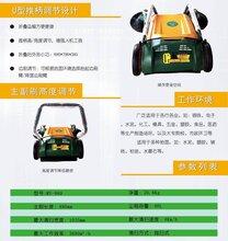 工厂专用扫路机-手推式扫路机-扫路机厂家图片
