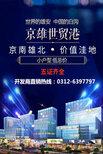 白溝-京雄世貿港領秀城-售樓處位置圖片4