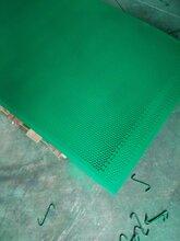 脚手架喷塑防护网生产厂家