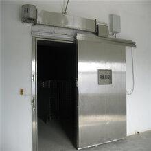 山东雪盾聚氨酯冷库门,彩钢不锈钢平移门,厂家直销保温门