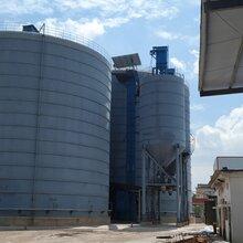廊坊大型钢板仓水泥筒仓2万吨制作案例图片