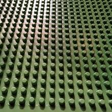 石景山排水板品牌商信誉棋牌游戏-价格图片