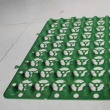 铜仁信誉棋牌游戏品滤水板生产厂信誉棋牌游戏-价格图片