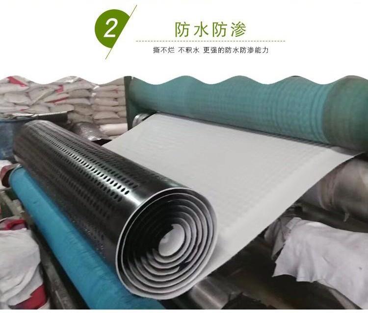 漯河排水板、滤水板价格及报价