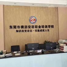 东莞东城成人自考本科教育平台图片