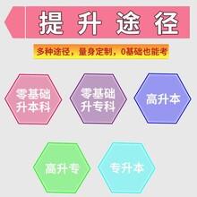 東莞成人遠程教育課程圖片
