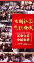 白溝+京雄世貿港三期熱銷樓盤圖片