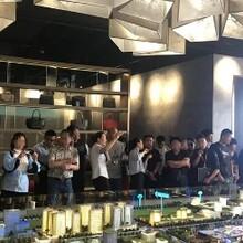 雄安房價京雄世貿港活力谷適合居住人群圖片