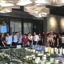 白溝京雄世貿港領秀城-圖片