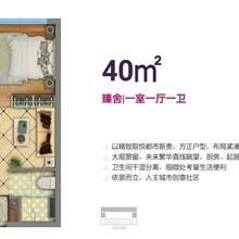 長治領秀城樓盤價格圖片