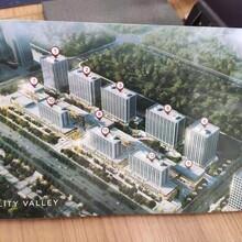 德州京雄世貿港領秀城售樓中心電話圖片
