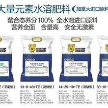 茶葉專用水溶肥廠家價格促進發芽提高產量