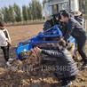 青海药材收获机地下根茎类收获机械丹参黄芪柴胡等挖药机