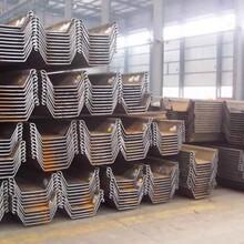 出租拉森钢板桩,深圳市耐用钢板桩厂家直销图片