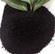 遼寧腐植酸鈉加工