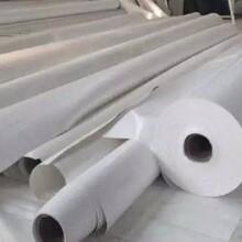 南京定制膜结构材料价格实惠图片