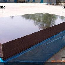 四平建筑木模板清水模板厂家质量保证图片