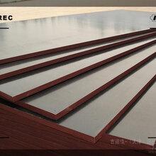 通化清水模板规格齐全质量保证图片