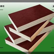 阜新木方模板胶合板木模板图片