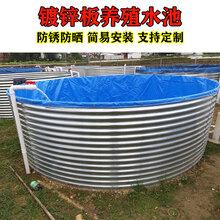 大型养殖帆布水池鱼池定做养虾镀锌板帆布养殖池