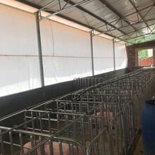 豬場卷簾布加厚防寒保暖雞舍卷簾定做畜牧養殖場養牛場卷簾圖片