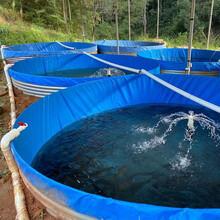 帆布鱼池_用帆布做养鱼水池的好处圆形高密度镀锌板养殖池图片