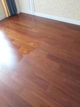 普陀区承接木地板打蜡服务价格图片