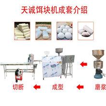 小型米皮饵块机云南饵块机送技术图片