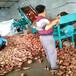 淀粉機組土豆淀粉機價格實惠