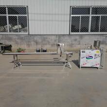 厂价直销自熟碱粑机碱米粑机技术图片