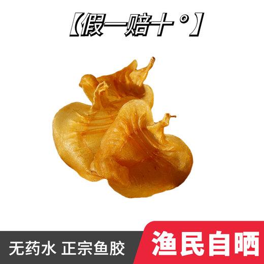 福州鲽鱼胶价格大口鳘价钱