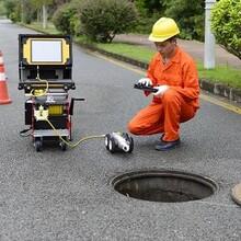 宝山区机器人检测公司图片