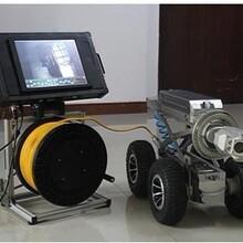 奉贤区机器人检测服务公司图片