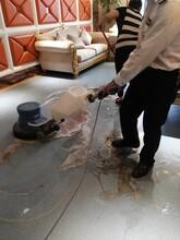 成都郫都承接地毯清洗服務報價圖片