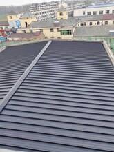 淮南65-400型鋁鎂錳屋面板批發圖片