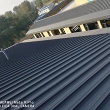 三明65-400型铝镁锰屋面板供应商图片