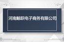 河南鲸跃shopify跨境电商独立站支持实地考察图片