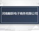 河南鲸跃跨境电商月销售额30万美金独立站shopify图片