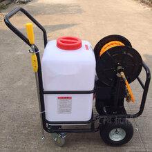 多功能農田稻田打藥機高壓噴霧機優質耐用蔬菜水果打藥機圖片