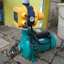 梅州從事自吸自動泵供貨商圖片