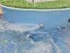揚州嬰兒游泳池量大從優廠家直銷 價格優惠鋼化玻璃嬰兒游泳池