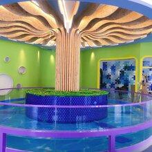 柳河县婴幼儿钢化玻璃游泳池价格亲子透明玻璃游泳池质量图片