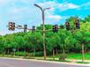 天水交通信號燈廠家直銷