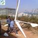 鳳城晟成風力發電機全套滿足用電需求500w小型風力發電機