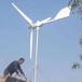 海沧晟成中小型风力发电机国家扶持产品500w小型风力发电机