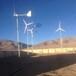 新建晟成户外风力发电机性价比高3kw风力发电机