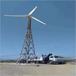 浦江并网风力发电机满足用电需求20kw风力发电机