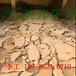 砂石場污水處理設備_沙場泥漿壓干機_洗沙污水處理壓濾機